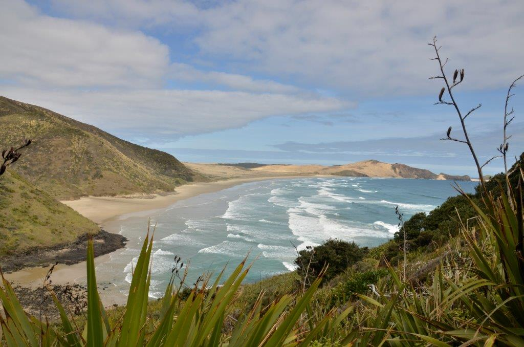 AucklandToDunes - DSC4956