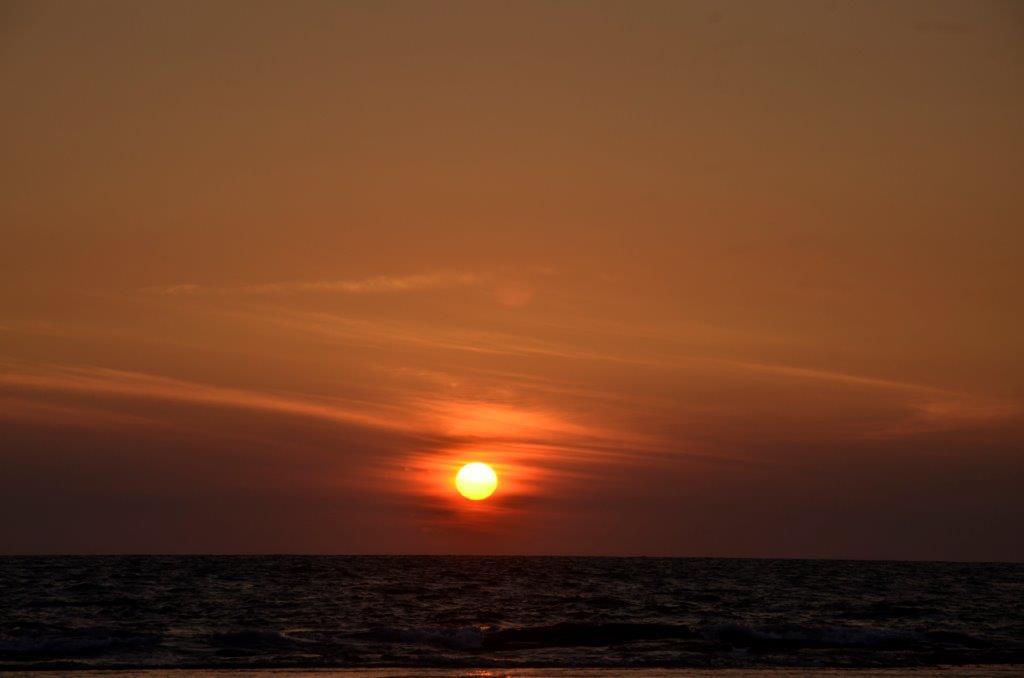 Negombo - DSC0921.jpg