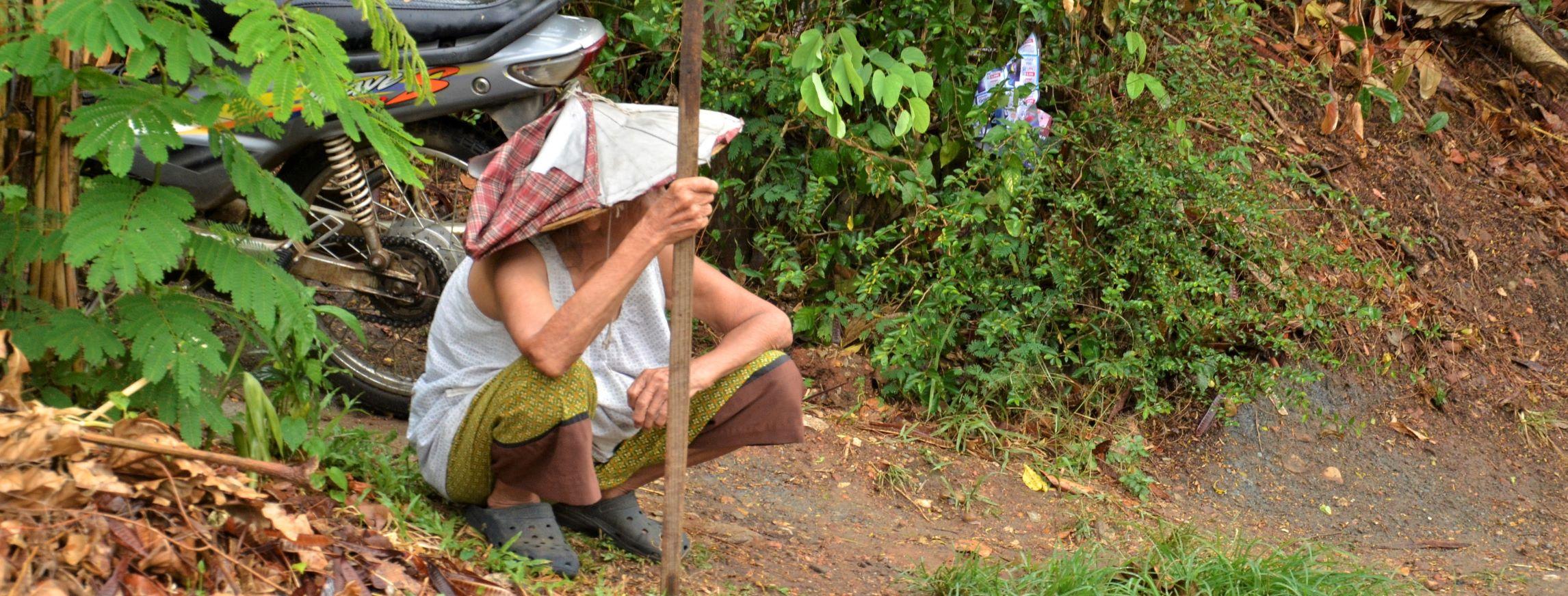 Thai Local.jpg